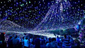2016 Holiday Lights Tour